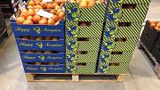 Продаем томаты из Испании Алматы
