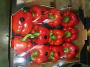 Продаем перец из Испании Алматы
