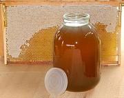 Мёд натуральный горный от пчеловода с эко-пасеки Алматы