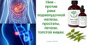 Tellaria - от рака Алматы