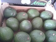Продаем авокадо из Испании Санкт-Петербург