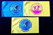 Флаги и настольные флажки с логотипом Алматы