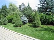 Озеленение.обслуживание приусадебных участков Алматы
