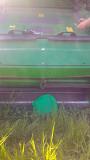 Зерноуборочный комбайн JOHN DEERE W 540 2013 года выпуска Алматы