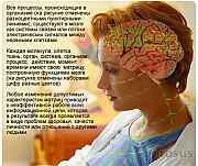 Лечебно-диагностическая I T-система/virtual scanner-exclusive Санкт-Петербург