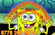 Командировочные, Транспортные услуги, Гостиничные, Чеки на товар Алматы