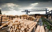 Ищем дилеров и партнёров по деревянному домостроению в Казахстане Нур-Султан (Астана)