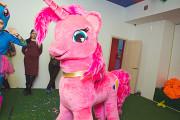 Шоу пони Нур-Султан (Астана)