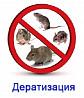 Уничтожения грызунов Дератизация Алматы