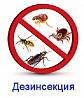 Уничтожения насекомых Дезинсекция Алматы