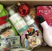 Подарок на новый год. Бесплатно доставит сам Дедушка мороз и Снегурочка доставка из г.Алматы