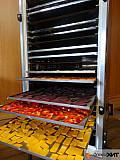 Инфракрасная сушилка (дегидратор) для овощей и фруктов Алматы