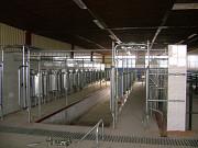 Строительство проектирование ферм крс козлятников под ключ с запуском оборудования Нур-Султан (Астана)