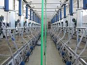Транспортеры навозоудаления Тсн-160 Тсн-2б Тсн-3б Дельта скреперные установки с монтажом Нур-Султан (Астана)