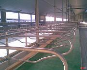Молокопроводы, доильные залы, Система поения на 100 -200 голов по Гост С Монтажом Нур-Султан (Астана)