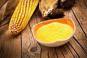 Кукурузный глютен Алматы
