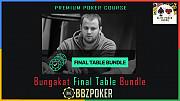 Bbz Poker Bungakat Final Table Bundle - Advanced Poker Coses Cheap Москва