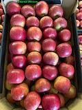 Продаем яблоки Алматы