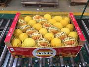 Продаем лимоны Алматы