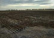 Крестьянское хозяйство (орошаемые земли) Павлодарская область
